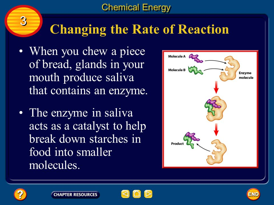 Changing the Rate of Reaction