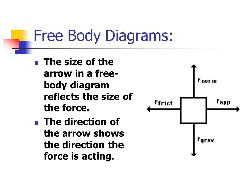 Free Body Diagrams: The size of the arrow in a free-body diagram reflects the size of the force.