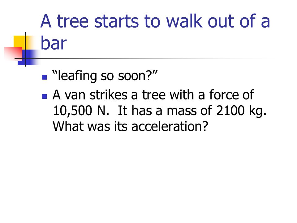 A tree starts to walk out of a bar