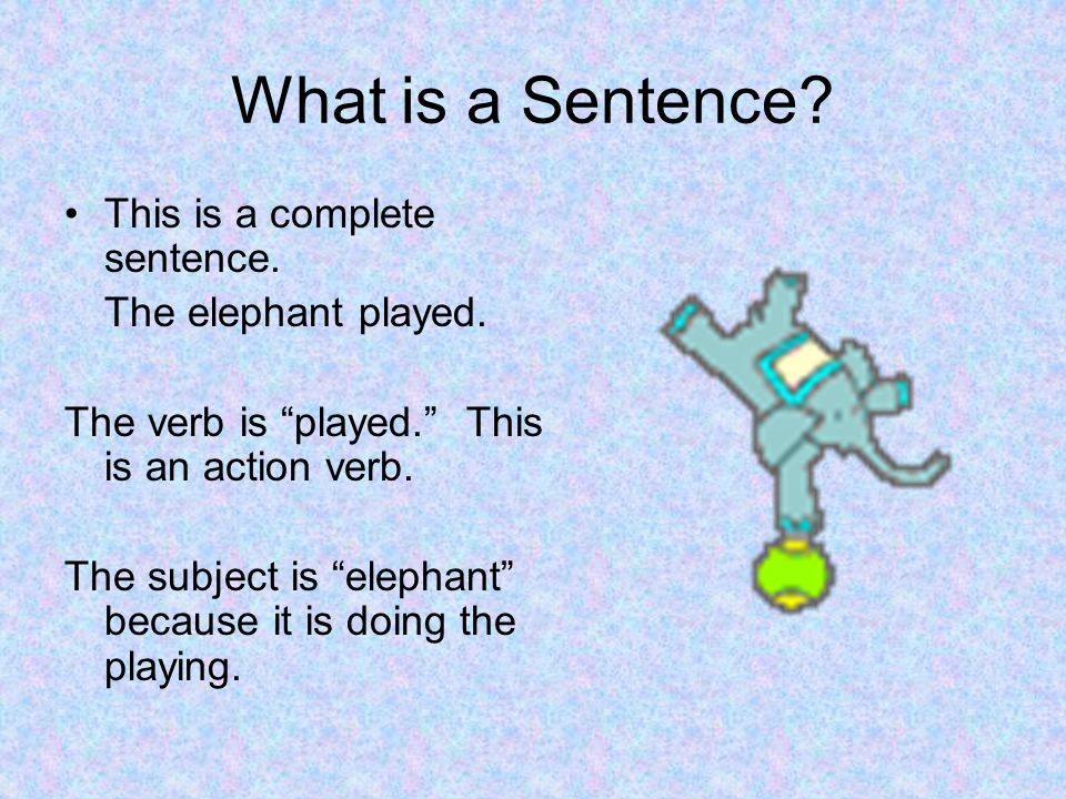What is a Sentence This is a complete sentence. The elephant played.