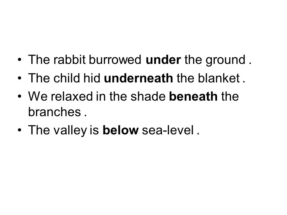 The rabbit burrowed under the ground.