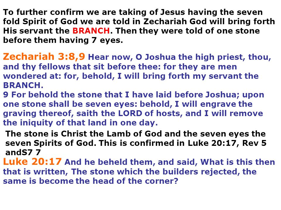 To further confirm we are taking of Jesus having the seven fold Spirit of God we are told in Zechariah God will bring forth His servant the BRANCH. Then they were told of one stone before them having 7 eyes.