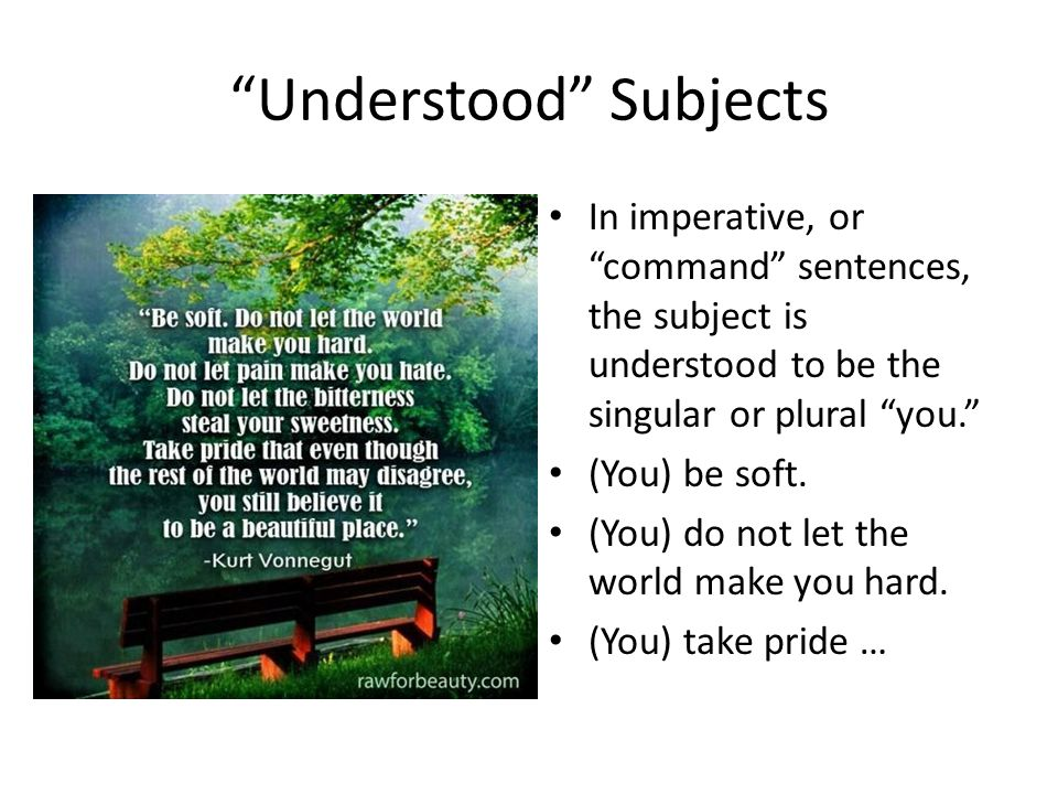 Understood Subjects