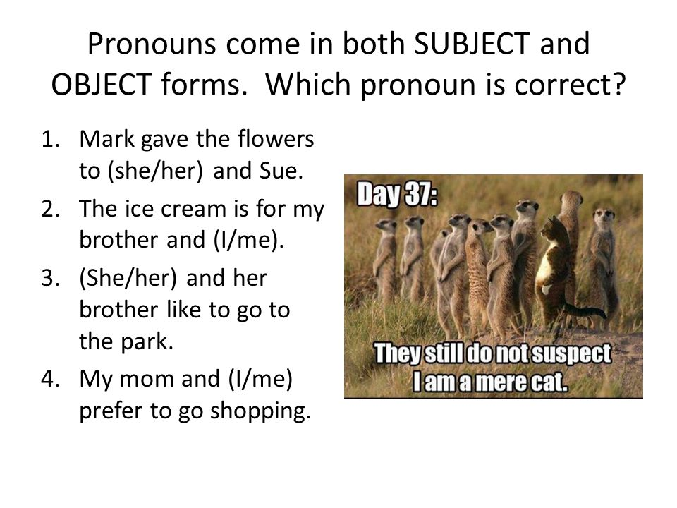 Pronouns come in both SUBJECT and OBJECT forms