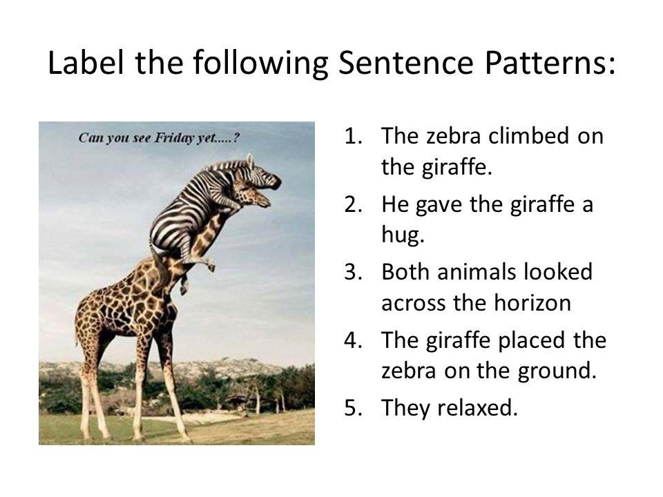 Label the following Sentence Patterns: