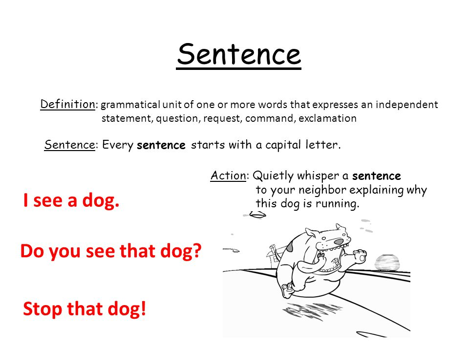 Sentence I see a dog. Do you see that dog Stop that dog!