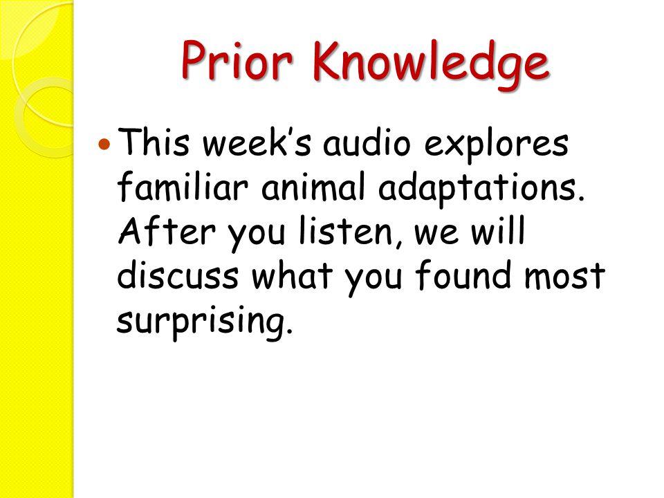 Prior Knowledge This week's audio explores familiar animal adaptations.