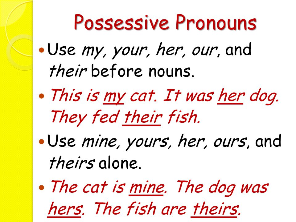 Possessive Pronouns Use my, your, her, our, and their before nouns.