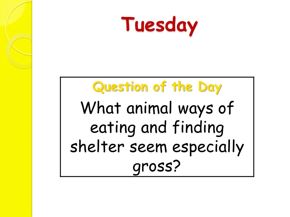 What animal ways of eating and finding shelter seem especially gross