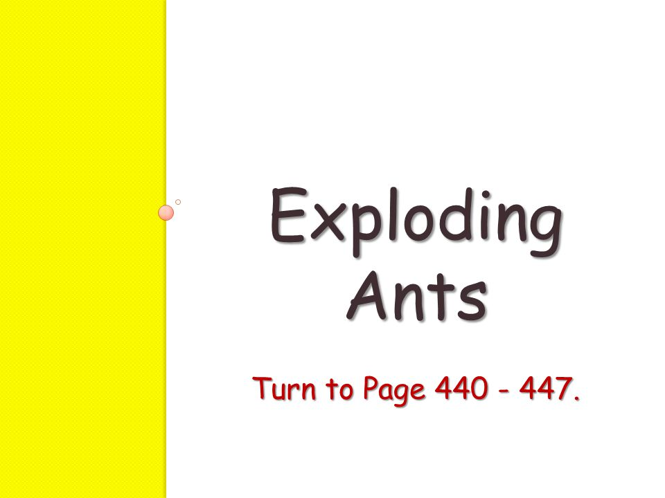 Exploding Ants Turn to Page 440 - 447.