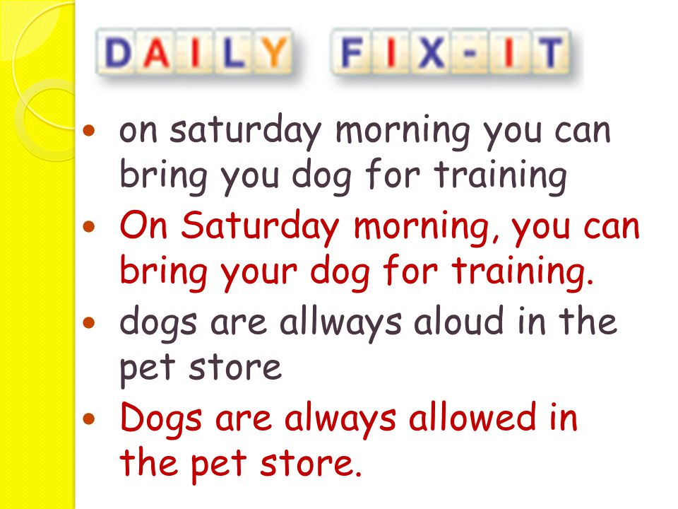 on saturday morning you can bring you dog for training