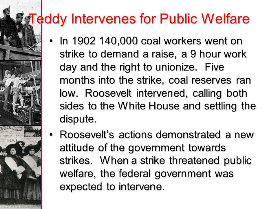 Teddy Intervenes for Public Welfare