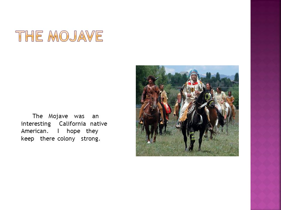 The mojave The Mojave was an interesting California native American.