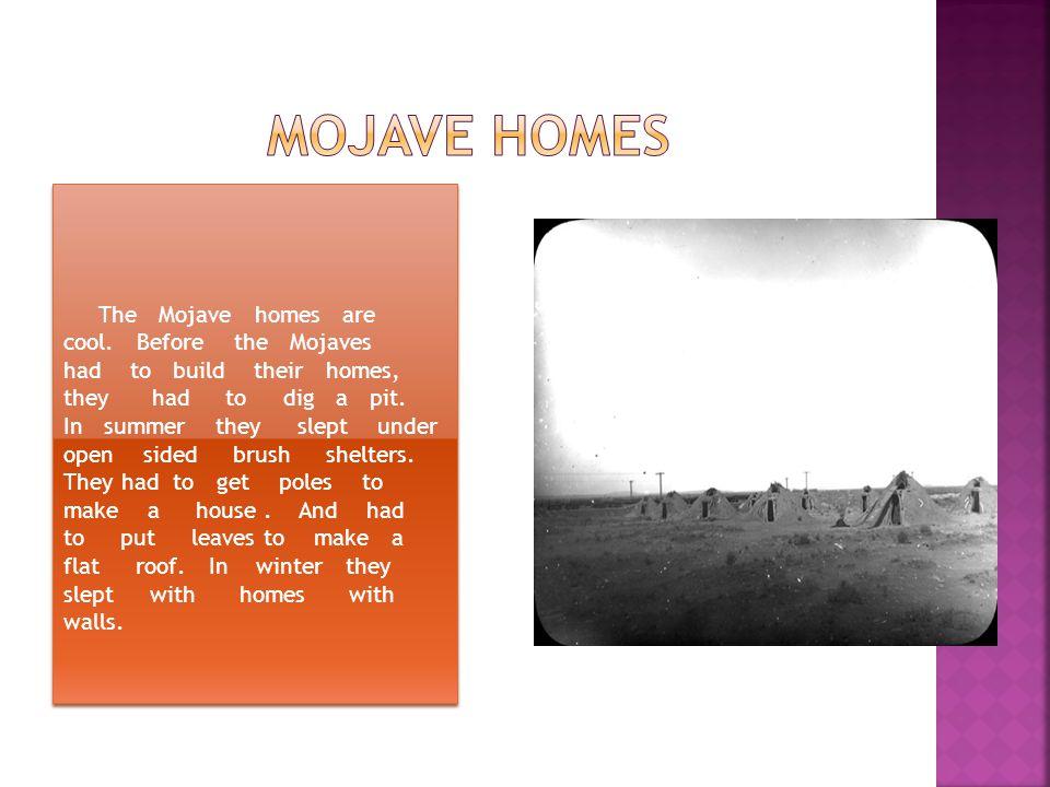 Mojave homes