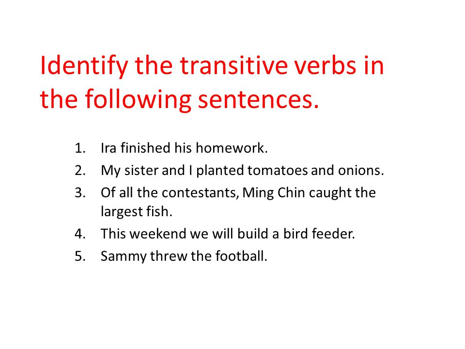 Identify the transitive verbs in the following sentences.