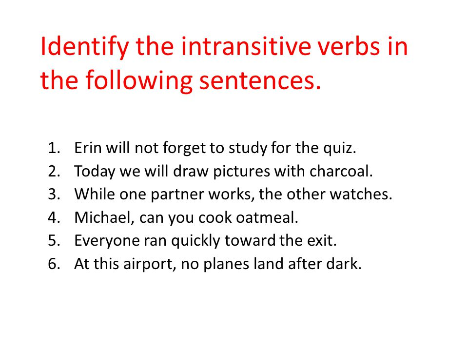 Identify the intransitive verbs in the following sentences.