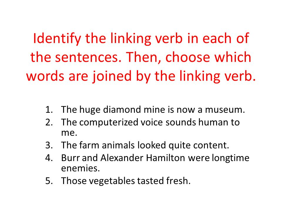 Identify the linking verb in each of the sentences