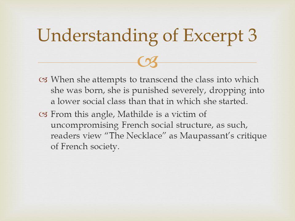 Understanding of Excerpt 3