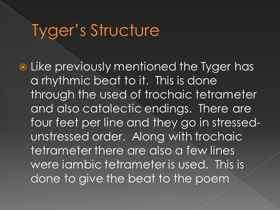Tyger's Structure