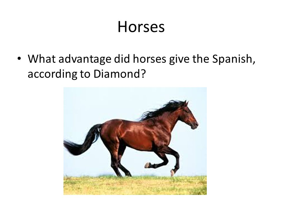 Horses What advantage did horses give the Spanish, according to Diamond 12:26-14:24