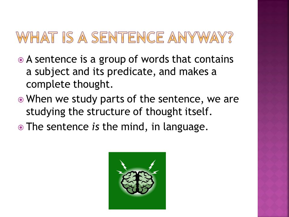 What is a sentence anyway