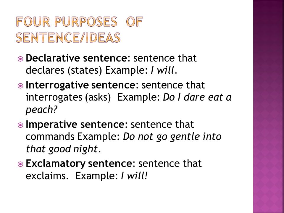 Four purposes of sentence/ideas