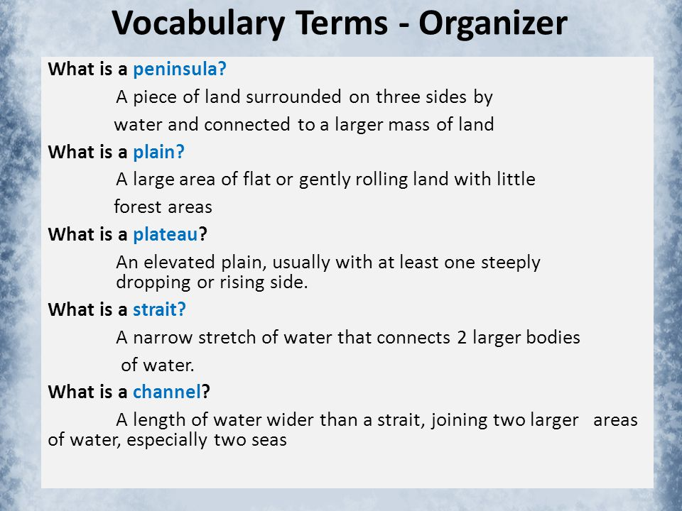Vocabulary Terms - Organizer