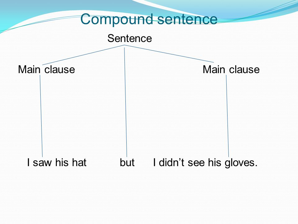 Compound sentence Sentence Main clause Main clause I saw his hat but I didn't see his gloves.