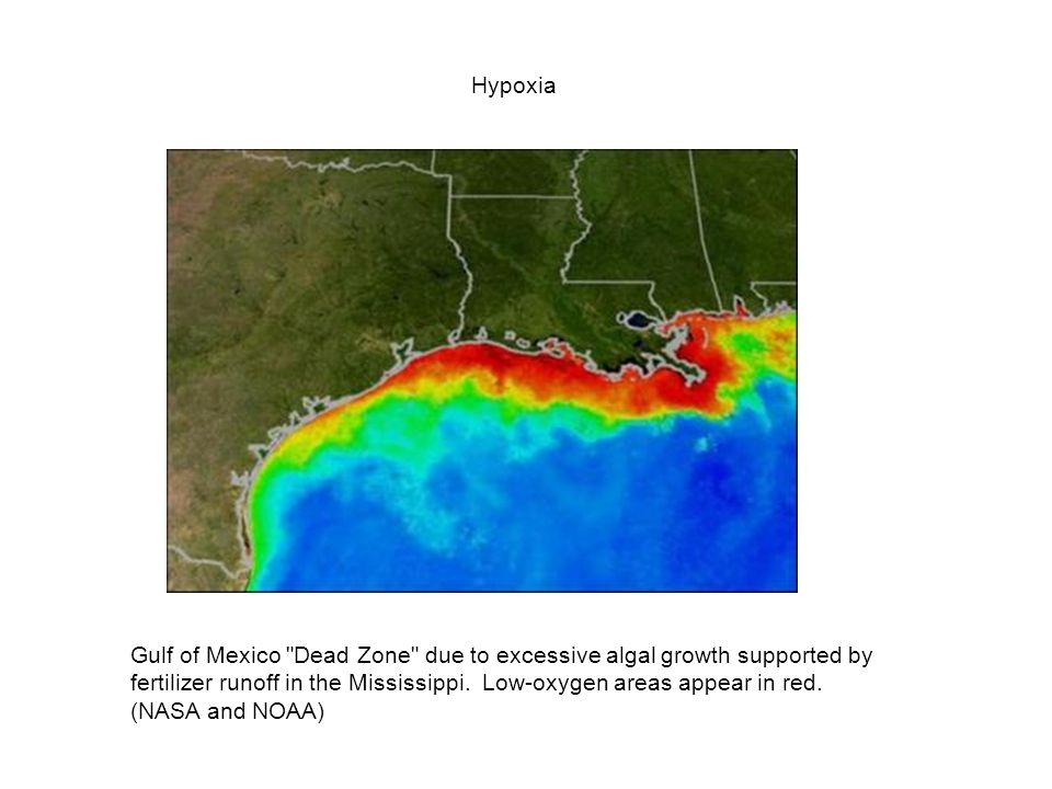 Hypoxia Gulf of Mexico Dead Zone due to excessive algal growth supported by fertilizer runoff in the Mississippi. Low-oxygen areas appear in red.