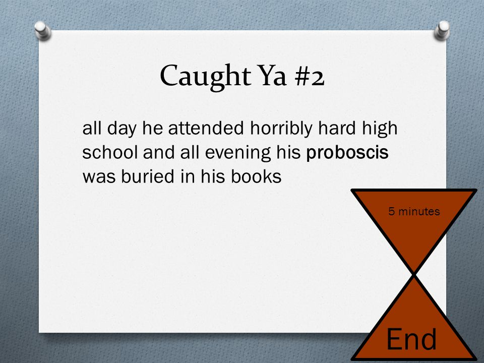 Caught Ya #2 all day he attended horribly hard high school and all evening his proboscis was buried in his books.