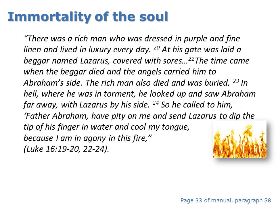 Immortality of the soul