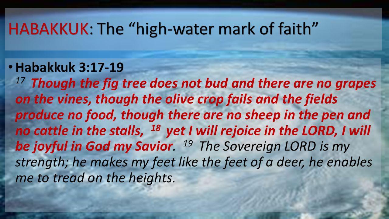 HABAKKUK: The high-water mark of faith