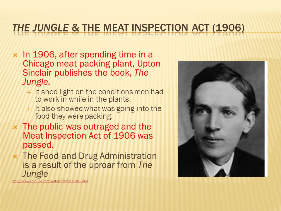 The Jungle & The Meat inspection act (1906)