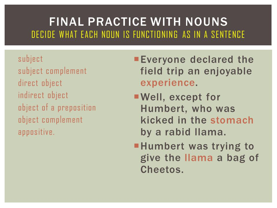 Final Practice With Nouns Decide what Each Noun Is Functioning AS In A Sentence