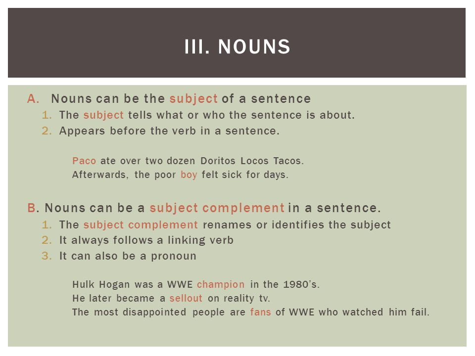 III. Nouns Nouns can be the subject of a sentence