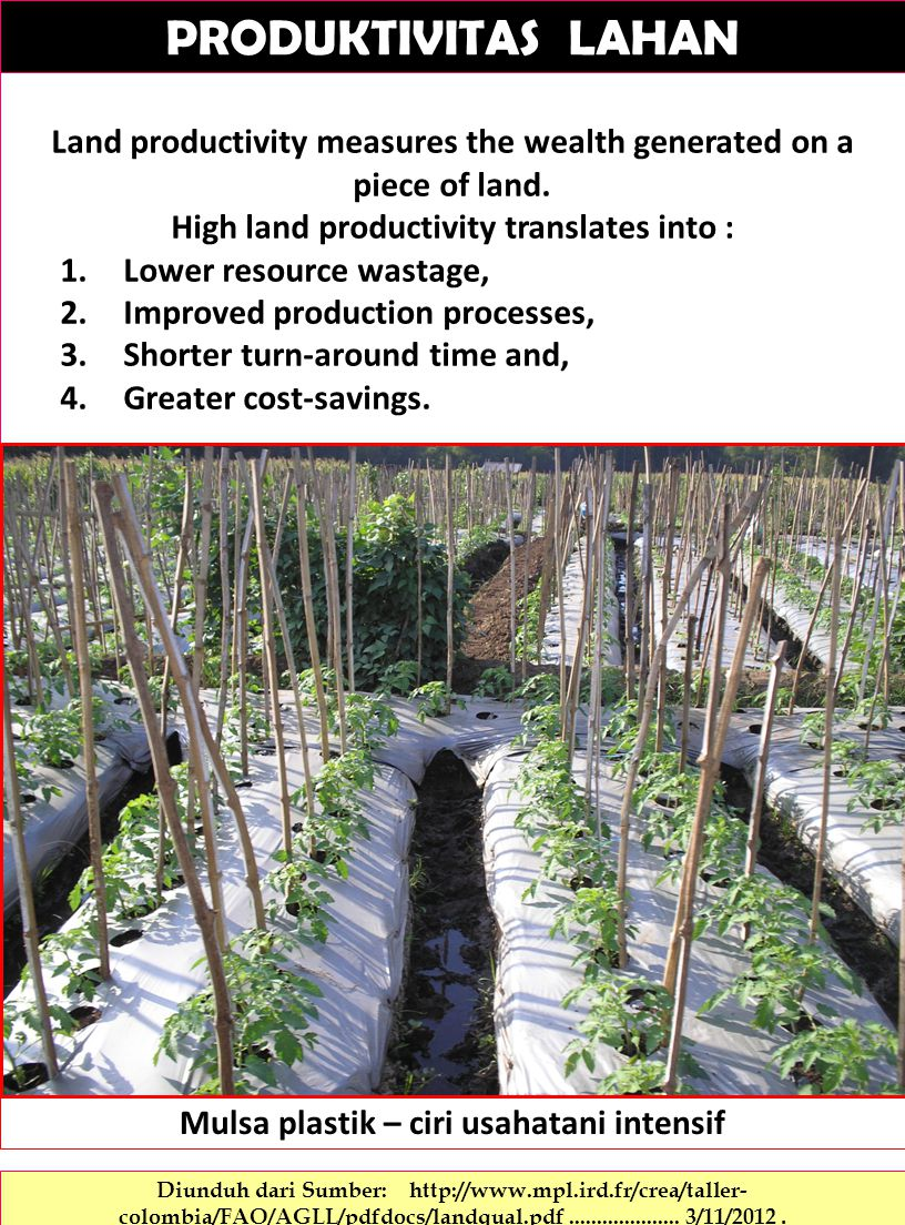 PRODUKTIVITAS LAHAN Land productivity measures the wealth generated on a piece of land. High land productivity translates into :