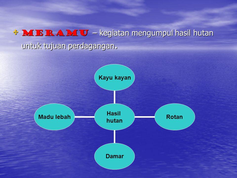 Meramu – kegiatan mengumpul hasil hutan untuk tujuan perdagangan.