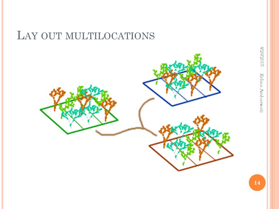Lay out multilocations