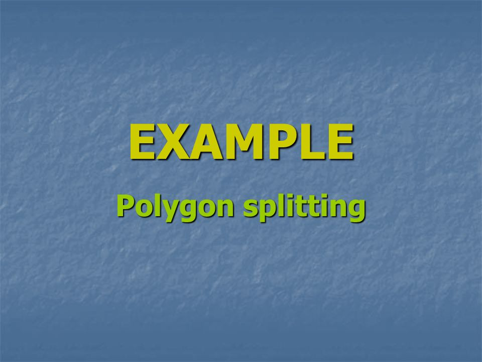 EXAMPLE Polygon splitting