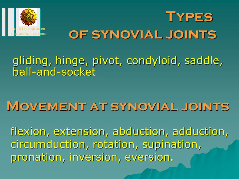 Types of synovial joints Movement at synovial joints