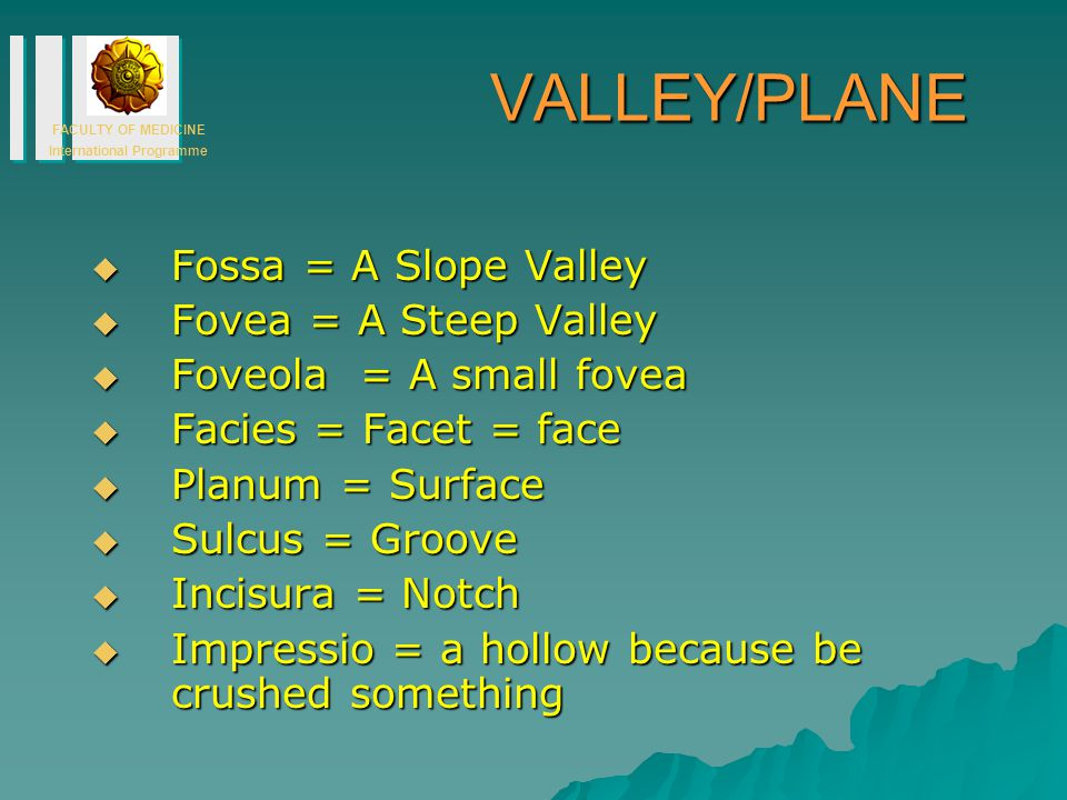 VALLEY/PLANE Fossa = A Slope Valley Fovea = A Steep Valley