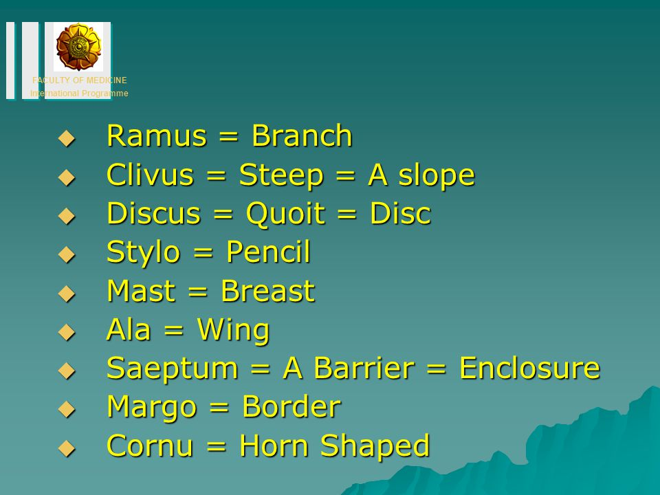 Ramus = Branch Clivus = Steep = A slope. Discus = Quoit = Disc. Stylo = Pencil. Mast = Breast. Ala = Wing.
