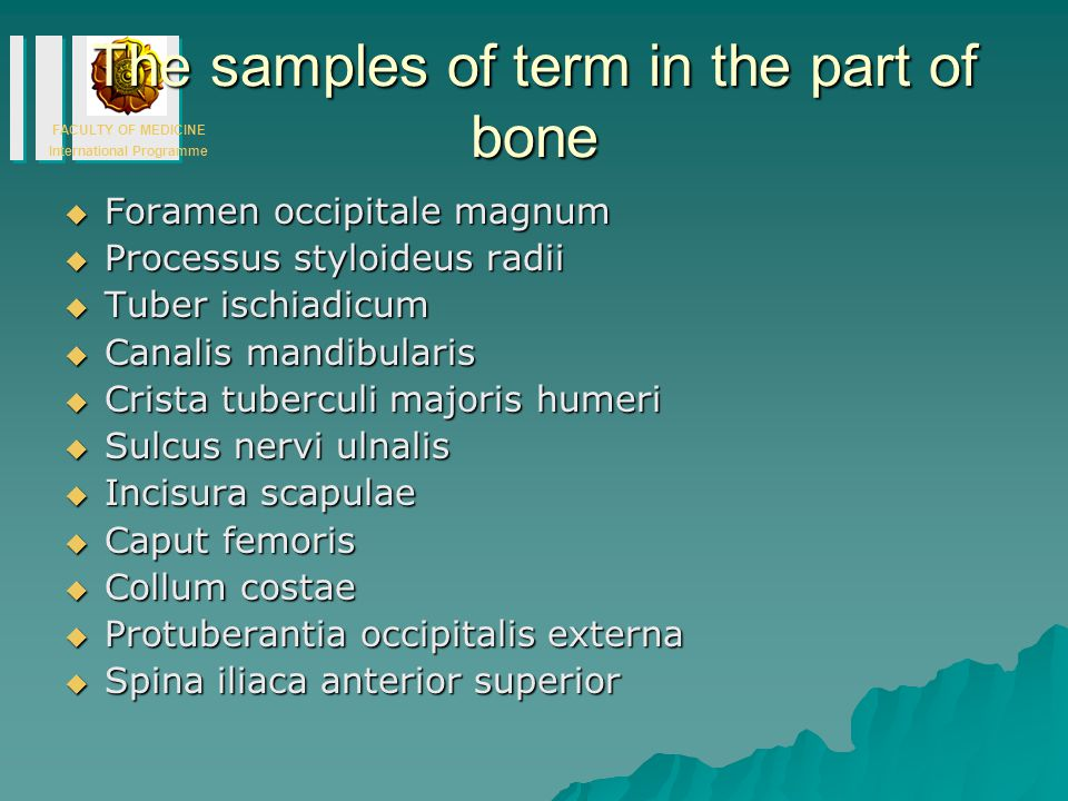 The samples of term in the part of bone