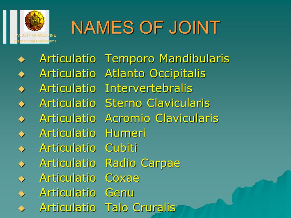 NAMES OF JOINT Articulatio Temporo Mandibularis