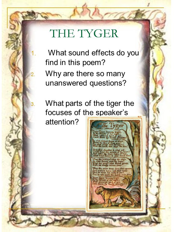 THE TYGER What sound effects do you find in this poem