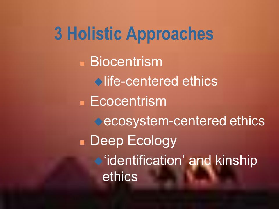 3 Holistic Approaches Biocentrism Ecocentrism Deep Ecology