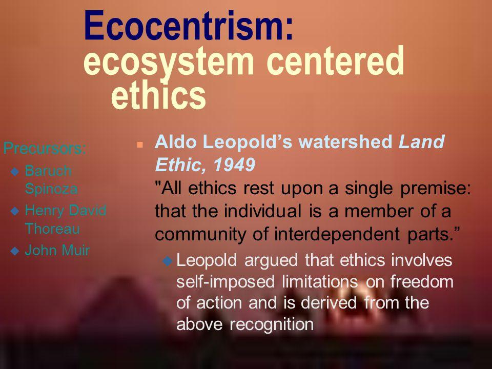 Ecocentrism: ecosystem centered ethics