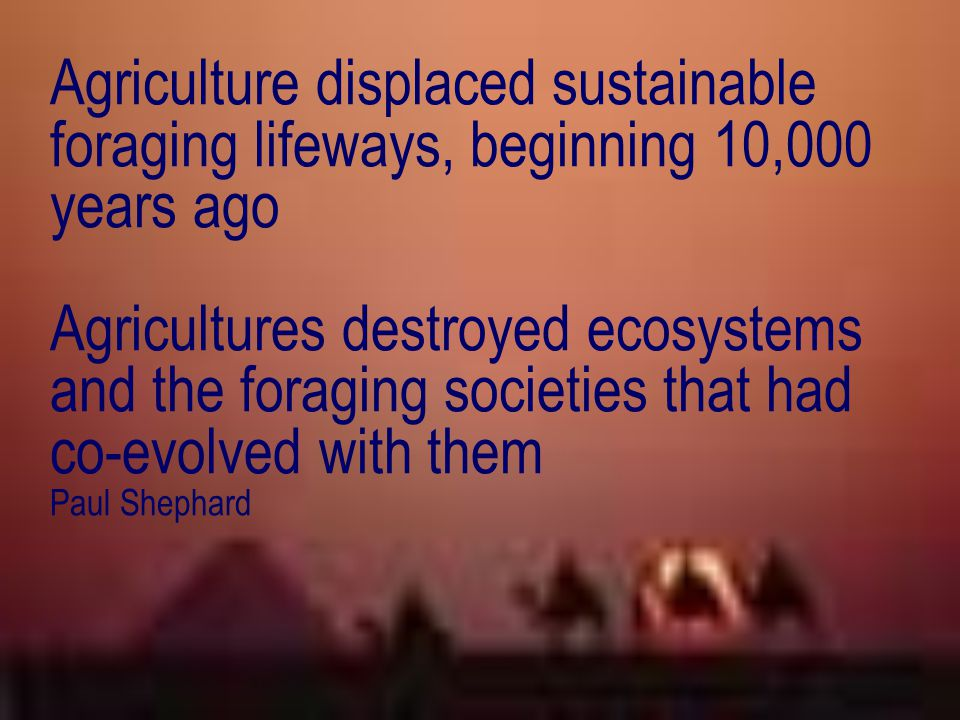 Agriculture displaced sustainable foraging lifeways, beginning 10,000 years ago Agricultures destroyed ecosystems and the foraging societies that had co-evolved with them Paul Shephard