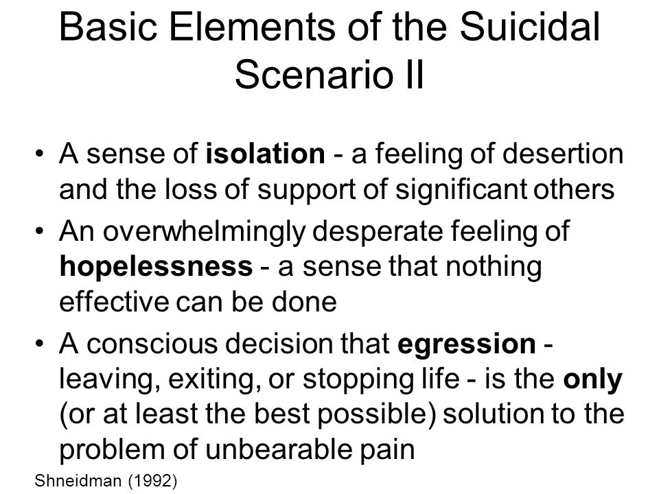 Basic Elements of the Suicidal Scenario II