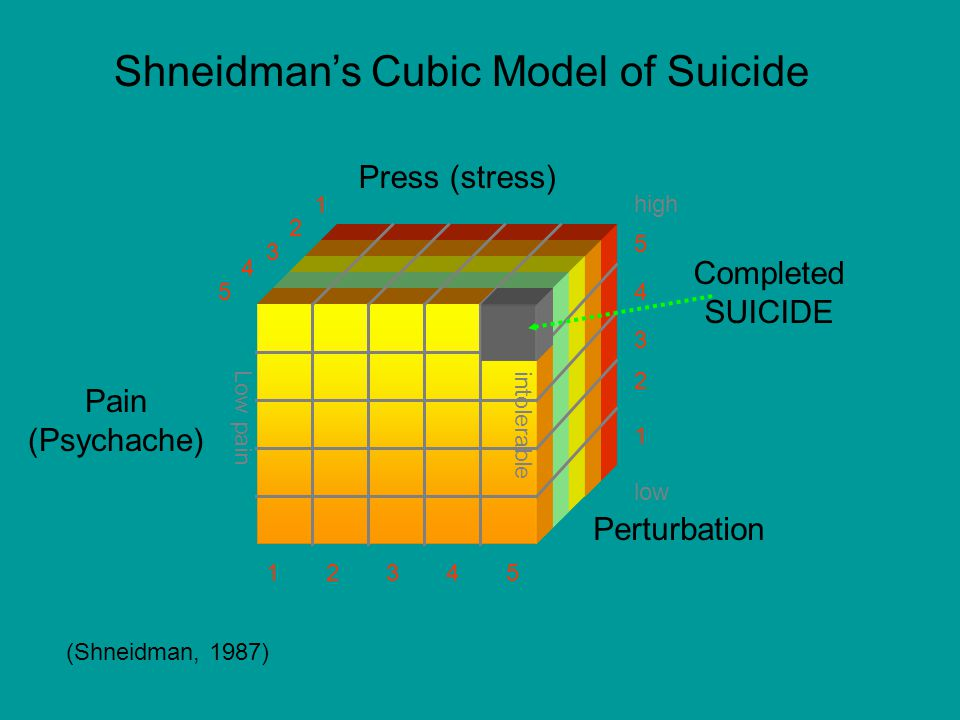 Shneidman's Cubic Model of Suicide